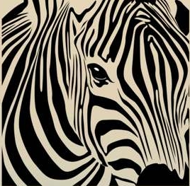 Zebra - dekorace na stěnu